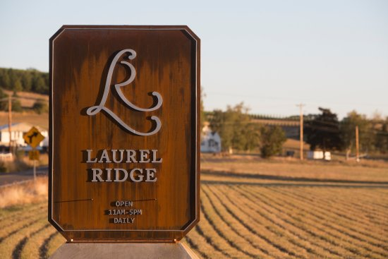 Carlton, Oregón: Laurel Ridge estate vineyard and winery