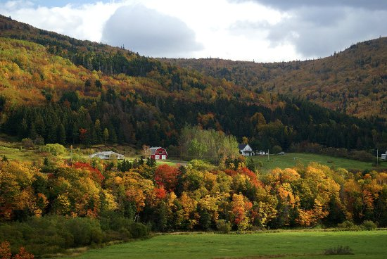 Cabot Trail: autumn colours Margaree Valley
