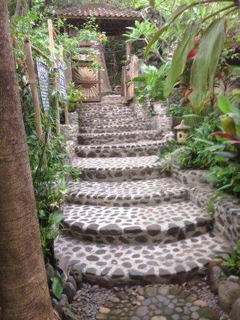 Aiona Garden of Health: outside