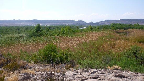 Rio Grande Village Nature Trail: view from trail