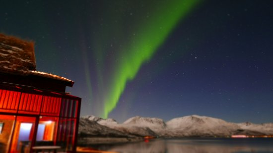Risøyhamn, Norge: Northern lights outside of the restaurant