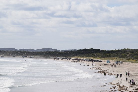 Robe, Australien: Easter time on Long Beach is always busy but there is plenty of room to surf, swim, paddle..
