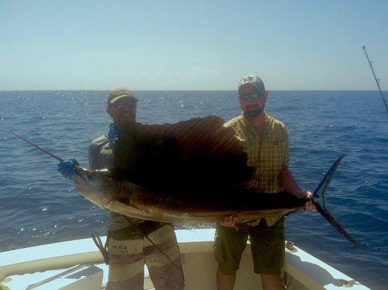 Hookie ii sportfishing charters charlotte amalie all for Virgin islands fishing
