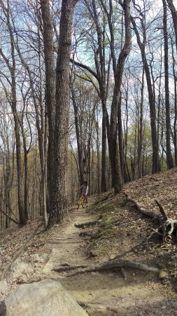Nashville, IN: Mountain Bike Dirt Trail
