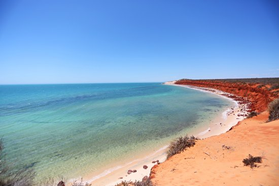 Denham, Australia: standing on top of the world! The top of the red dirt cliffs at the end of Bottle Bay