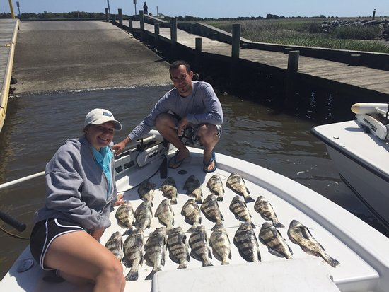 Cape Fear, NC: That's a lot of Black Drum!