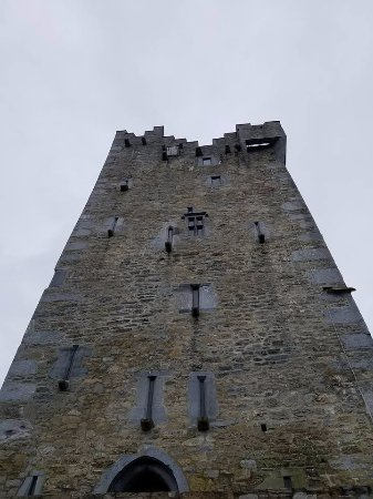 Ross Castle : Looking up!