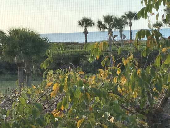 Sandpiper Beach: View from condo screen porch