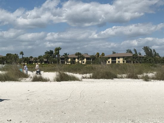 View of Sandpiper Beach condos from beach