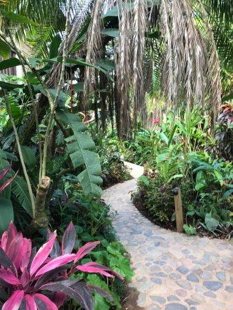 Belmopan, Belize: Beautiful grounds!