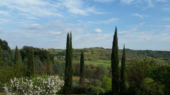 Torraccia di Chiusi: View From lower Garden