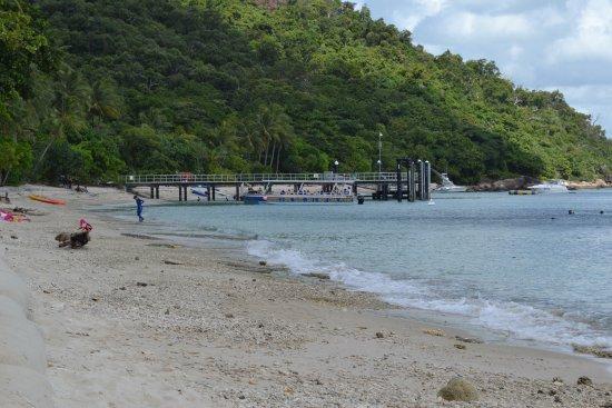 Fitzroy Island 이미지