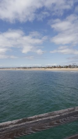 Seal Beach, CA: пляж