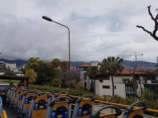 Yellow Bus Tours Funchal Photo