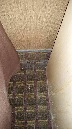 Liverpool, NY: Unidentifiable item on the floor and filth on floor and down the nightstand in the second room