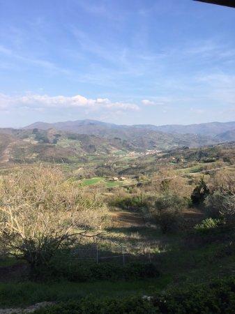 Vicchio, Italy: Panorama
