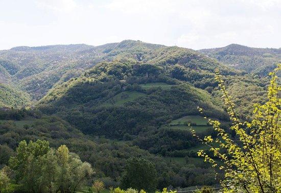 Vicchio, İtalya: Panorama da il mugello b&b