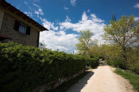 Vicchio, Italien: Entrata