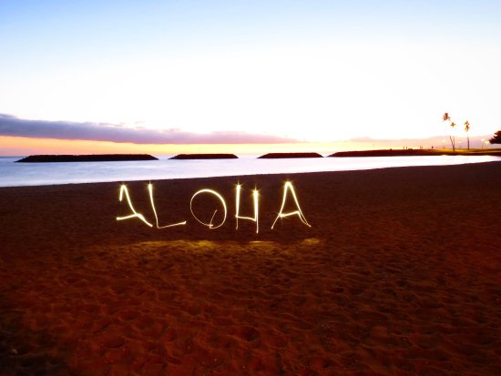 Oahu Photography Tours : Aloha, and mahalo Oaho Photography Tours!