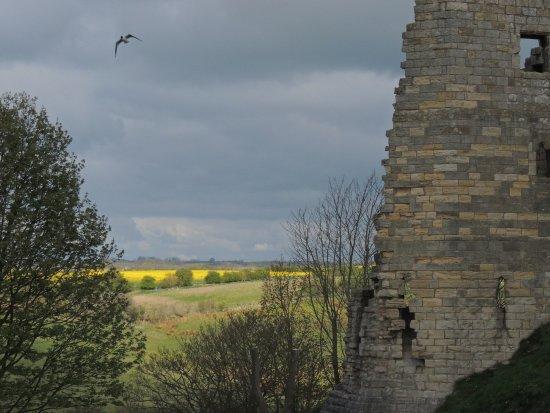 Warkworth, UK: Beautiful views