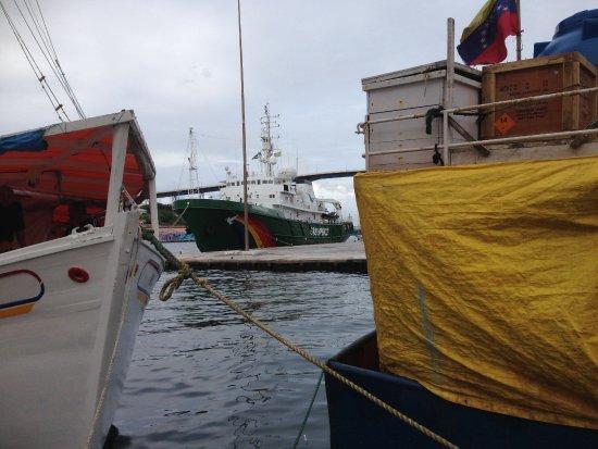 Punda: Tussen de visser boten Esperanza van Green Peace gespot