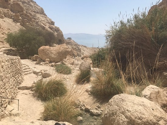 Paysages et cultures d'Israel ️ ️ ️ ️ - Picture of Israel visite guidee a la carte dans tout le pays, Jerusalem - Tripadvisor