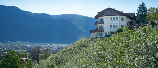 Panorama Hotel Garni Buehlerhof Photo