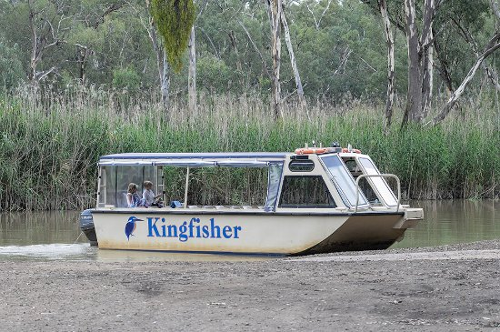 Barmah, Australia: The boat is custom designed to navigate this section of the Murray with 20 passengers