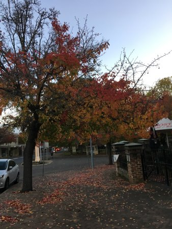 Moss Vale, Австралия: photo0.jpg