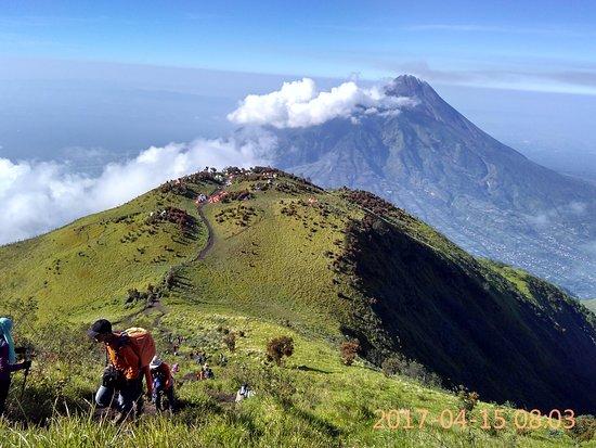 view sabana 1 2 picture of mount merbabu national park salatiga