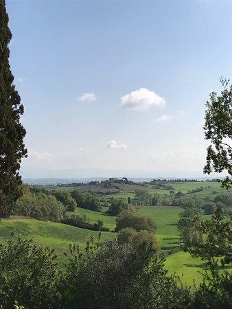 Montefollonico, Italia: photo2.jpg