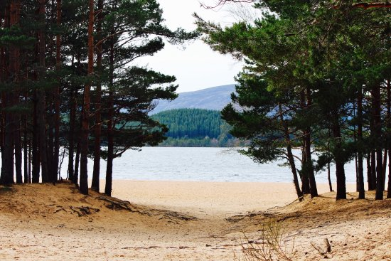 Aviemore, UK: What a lovely place with stunning views