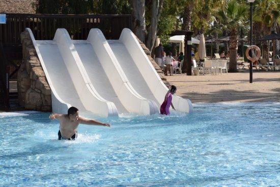 Marjal Costa Blanca EcoCamping Resort : Piscina Tropical