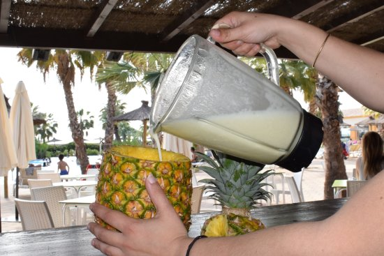 Marjal Costa Blanca EcoCamping Resort : Piña colada Piscina Tropical