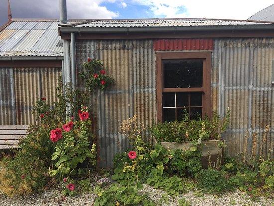 Cromwell, New Zealand: photo2.jpg