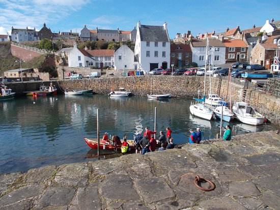 Crail Harbour, a short walk away