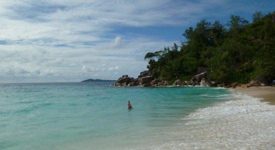Praslin Island, Seychelles: Le foto che fanno male al cuore....