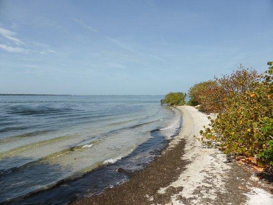 Palmetto, FL: Emerson Point Preserve