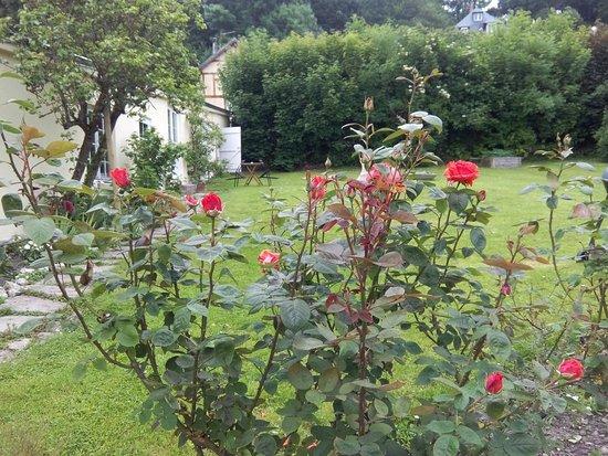 Villerville, França: Rosier du jardin hedonia maison d'hôtes