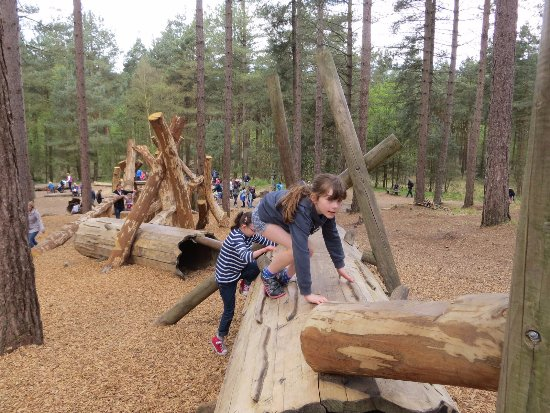 Ringwood, UK: One of the 10 stops on the forest play trail.