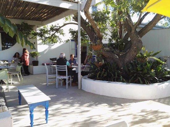 McGregor, แอฟริกาใต้: Part of the pretty courtyard garden