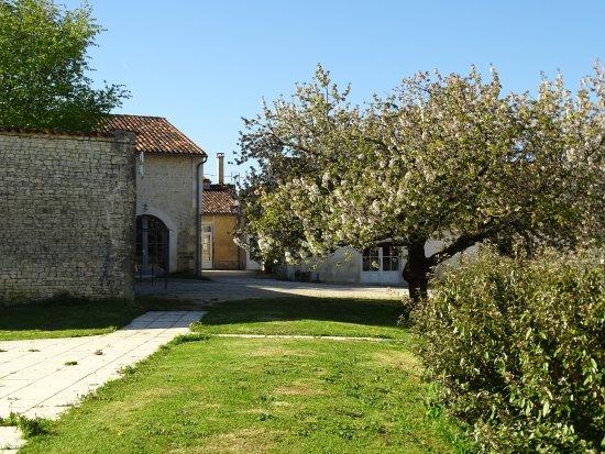 Asnieres-la-Giraud, Francia: Vue depuis la piscine