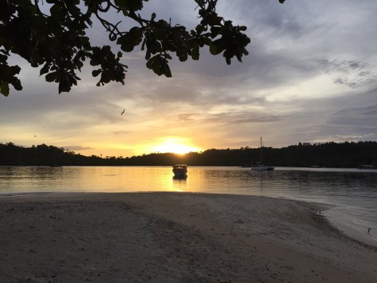 Blue Bay Divers: Tolle Unterwasserwelt mit Frogfish und Coconut Oktopus vor Ort!
