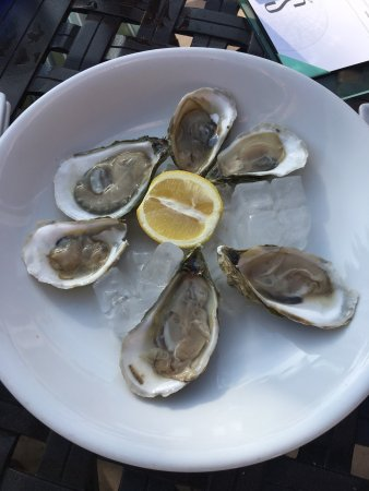 Shor American Seafood Grill: photo2.jpg