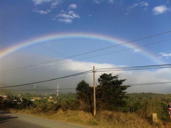 San Jose Metro, Costa Rica: Monteverde Marvels