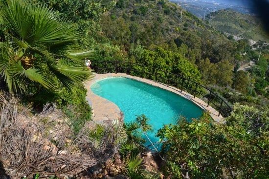 The Urban Villa: camino hacia la piscina