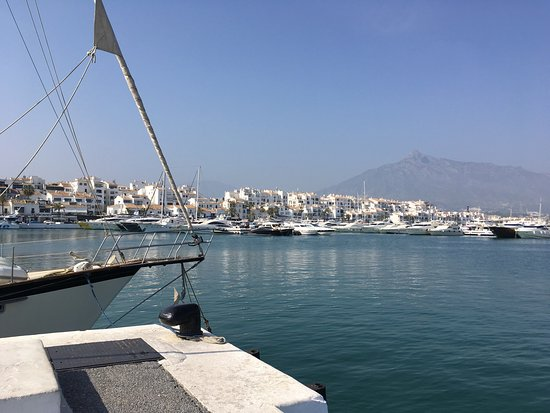 Picture of puerto banus marina marbella - Jacks smokehouse puerto banus ...