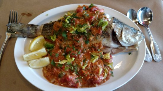 Fish: Bass