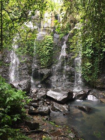 Bali Eco Stay Bungalows: photo3.jpg