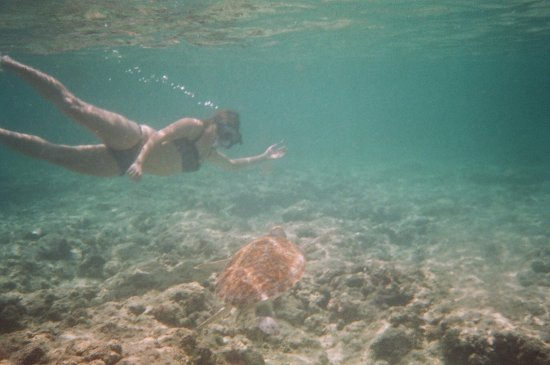 Christ Church Parish, Barbados: snorkeling